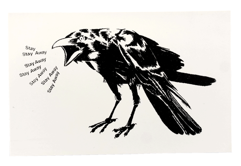 sticker_Crow