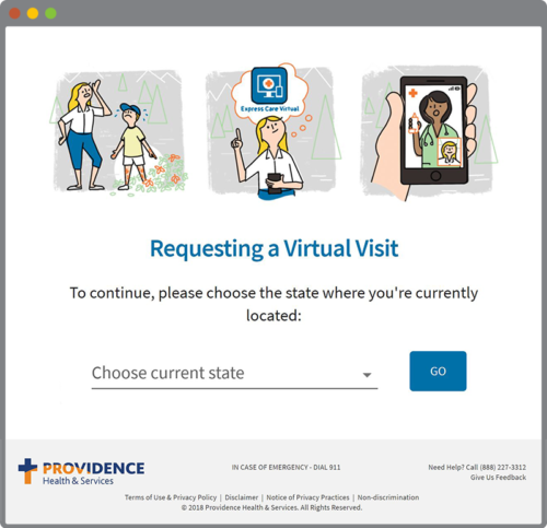 Virtual Visit in use